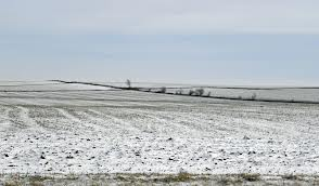 barren field frozen with snow